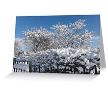 Winter's Grip Greeting Card