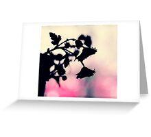 morning daisies Greeting Card