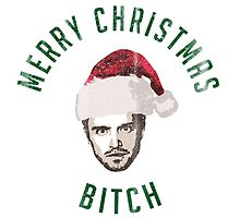 Pinkman Merry Christmas Bitch (light) by colorhouse