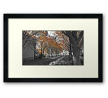 Fall Walk Framed Print