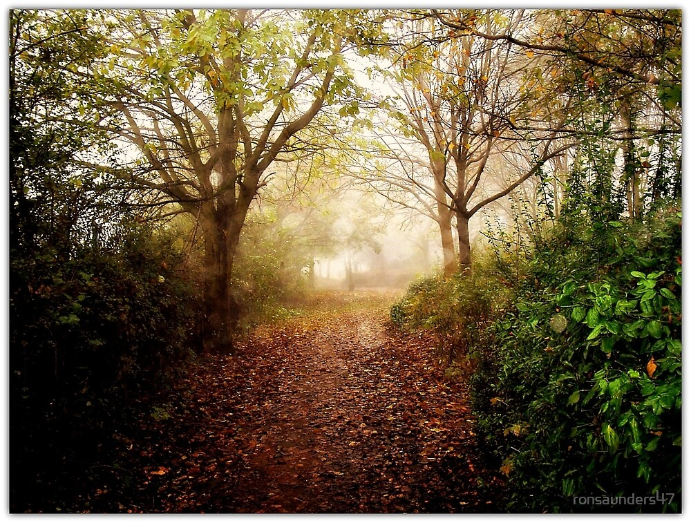 Misty Lanes... by ronsaunders47