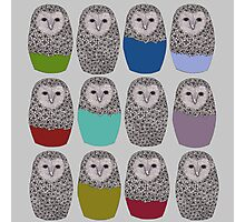 Bright Line Up of Owls Photographic Print