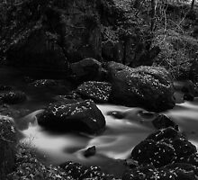 Below Colwith Force- Infra Red by rennaisance