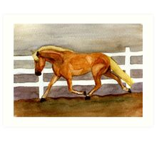 Haflinger Horse Portrait Art Print