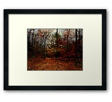Seasonal Autumn Road Framed Print