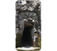 elephant s cave iPhone Case/Skin