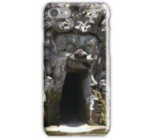 elephant s cave iPhone Case/Skin