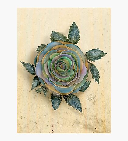 The Friendship Rose I Photographic Print