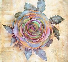 The Friendship Rose II by © Cassidy (Karin) Taylor