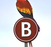 B is for Bird by mnkreations