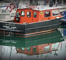 """""""Ganges Hawk"""" - Ganges Harbour, Salt Spring Island by Dawn144"""
