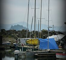 """Sail boat reflections"" - Ganges Harbour, Salt Spring Island by Dawn144"