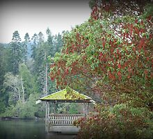"""Hut"" - Centennial Park, Ganges, Salt Spring Island by Dawn144"
