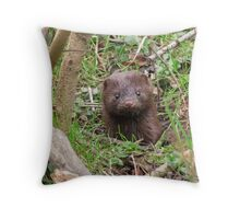 Little Mink Throw Pillow