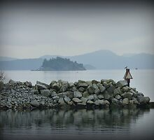 """""""Calm and Peaceful"""" - Ganges Harbour, Salt Spring Island by Dawn144"""