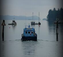 """""""Going Fishing"""" - Ganges Harbour, Salt Spring Island by Dawn144"""