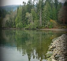 """""""Tree Reflections"""" - Ganges Harbour, Salt Spring Island by Dawn144"""