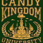 Candy Kingdom University by TeeNinja