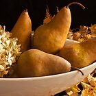 Pears And Hydrangea - Still Life  by Sandra Foster