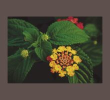 Red and Yellow Lantana Flower and Green Leaves Baby Tee