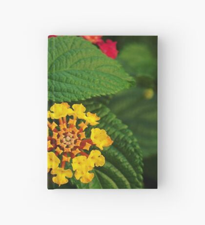 Red and Yellow Lantana Flower and Green Leaves Hardcover Journal