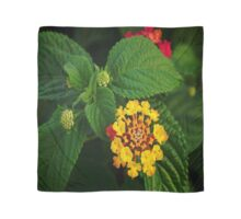 Red and Yellow Lantana Flower and Green Leaves Scarf