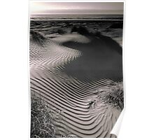 Coastal Sand Dune (duotone) Poster