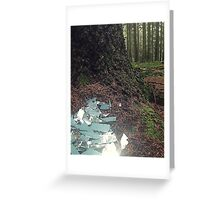 Once Upon a Time - Shattered Dreams Greeting Card