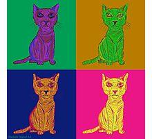 Grumpy and Annoyed Cat Pop Art Photographic Print