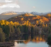 Tarn Hows in magnificent autumn light by Peter Talbot