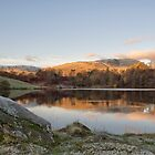 Tarn Hows in gorgeous autumn light by Peter Talbot
