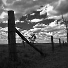Just a Fence by Paul  Donaldson