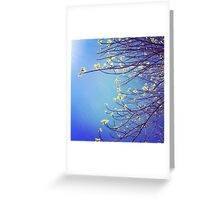Branching Out ~ Greeting Card