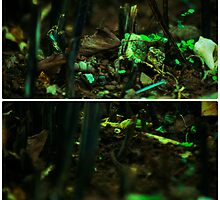 Miniature World by tropicalsamuelv