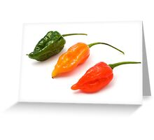 Dorset Naga Chili Greeting Card
