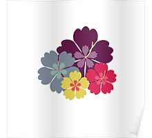 Colourful hibiskus flowers Poster