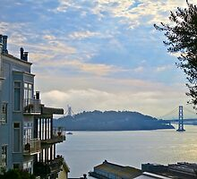AM San Francisco Bay by David Denny