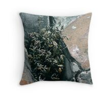 Unexpected Life Throw Pillow