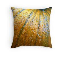 Pumpkin Pumpkin Big and Round Throw Pillow
