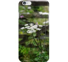 North Wales hedgerow iPhone Case/Skin