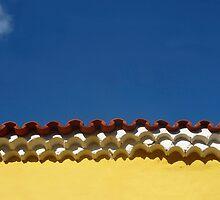 Trinidad roof details  by areyarey