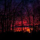 Sky on Fire by Dennis Maida