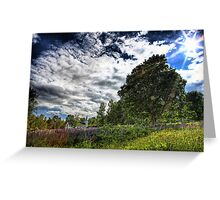 Lupin Field I Greeting Card