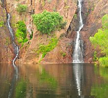 Wangi Falls by Terry Everson