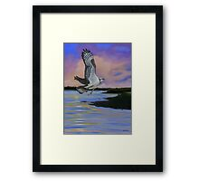 Osprey At Pearl River Island Framed Print