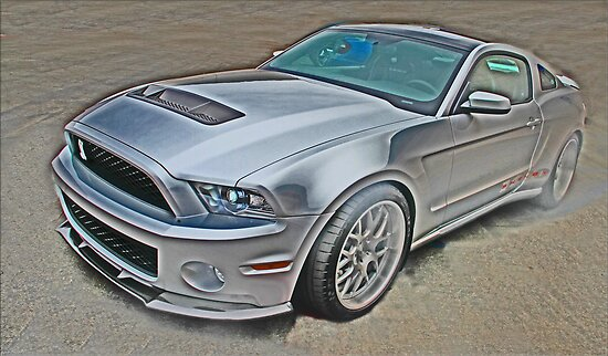 Shelby 1000 by Chet  King