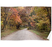 Road in Shawnee Forest Poster
