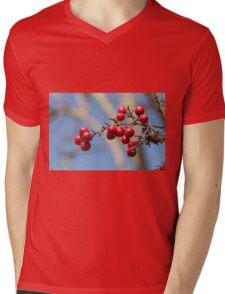 red berries Mens V-Neck T-Shirt