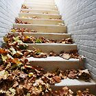 Autumn Stairway to Heaven  by Grace314