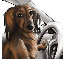 Weenie at the Wheel by Samantha Little